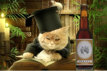 Bière artisanale ambrée : Beatus