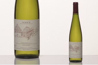 Sylvaner, vin d'Alsace AOC